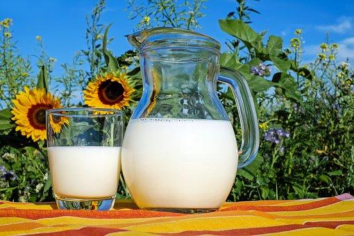 прясно мляко